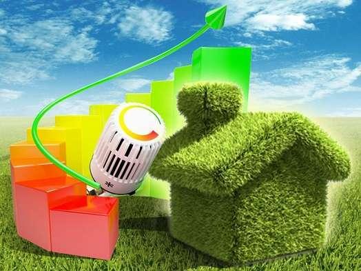 ecologico ok